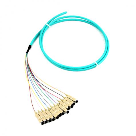 12 Fiber SC Multimode Pigtail