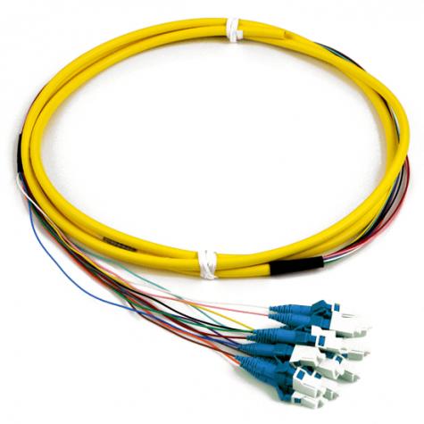 12 Fiber Singlemode LC Pigtail